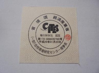 f:id:shima_c_nagoya:20170415133021p:plain